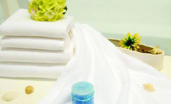 毛巾(平织).png