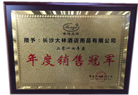 大林荣获峰洁年度销售冠军荣誉证书